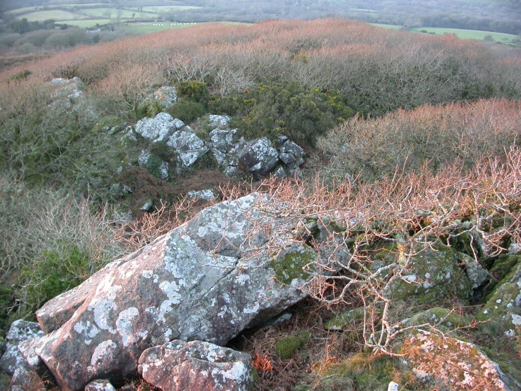view from Carn Llewyn
