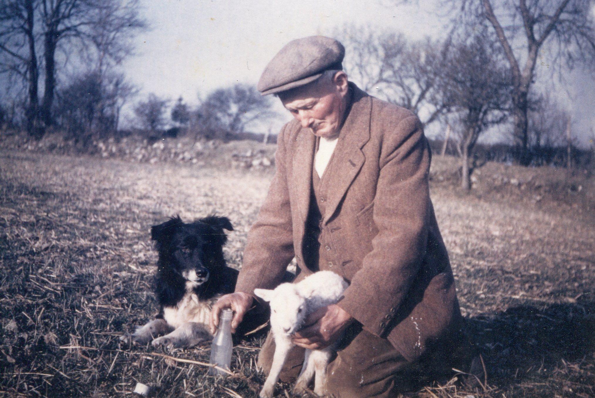 Shepherd with lamb and dog